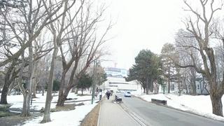 北海道大学2.JPG
